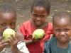 3-little-tanzanian-gi935ed